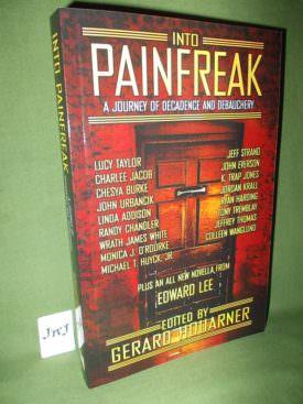 Book cover ofINTO PAINFREAK