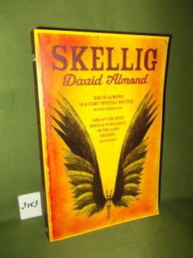 Book cover ofSkellig